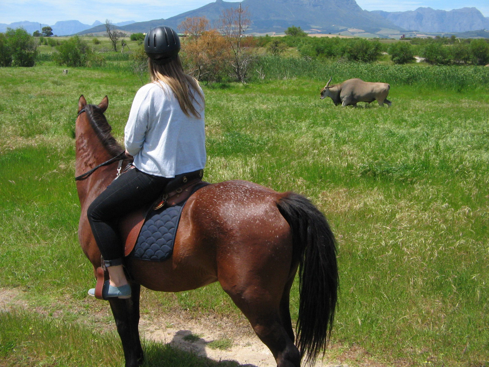 Horse riding keeps kids active.