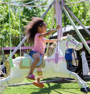 Swing Horses - Rides at Bugz Family Playpark