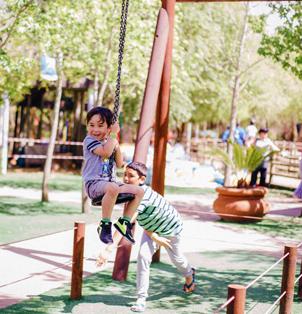 Zippy Slide - Rides at Bugz Family Playpark
