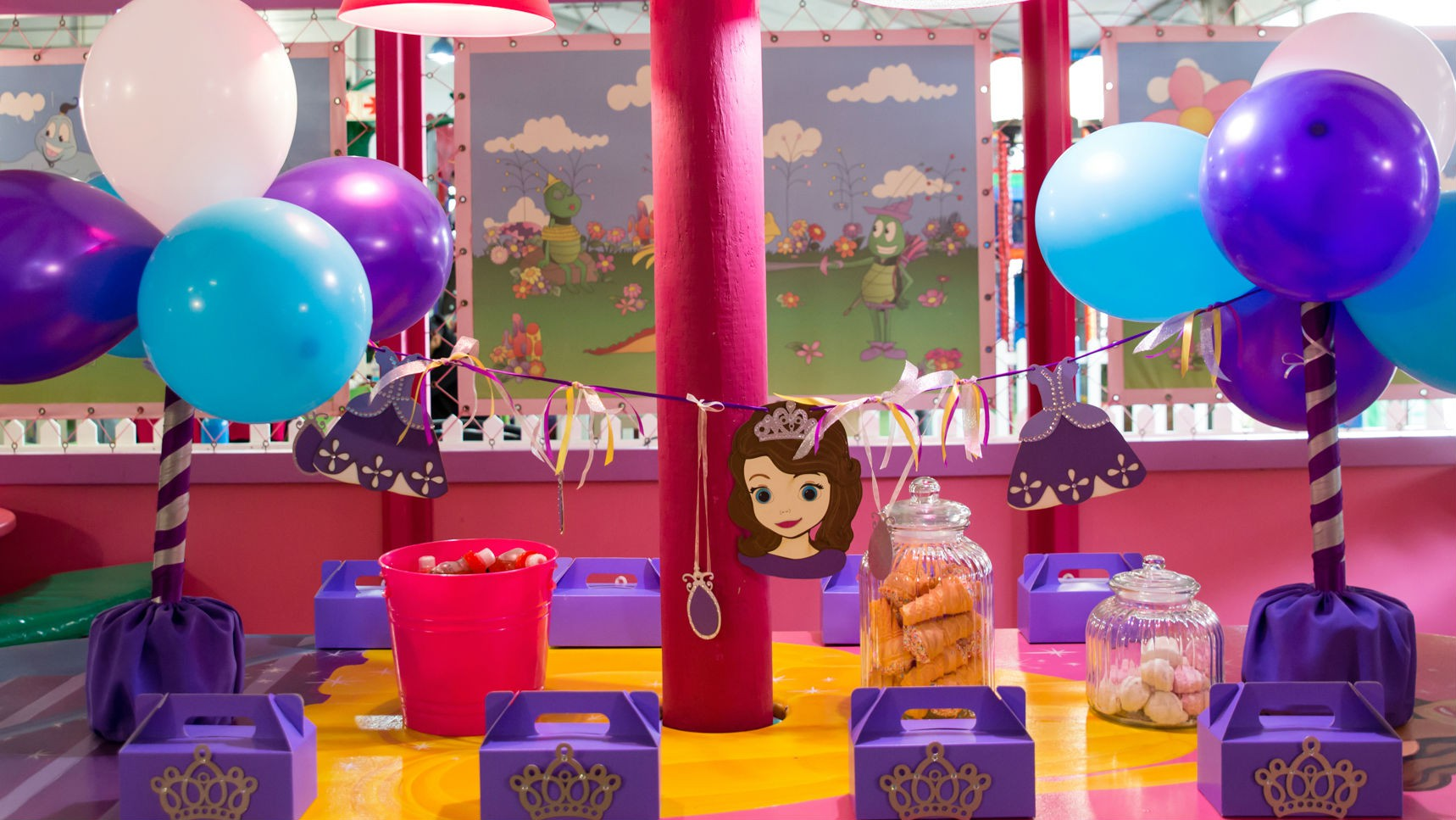 Sofia the First party setup
