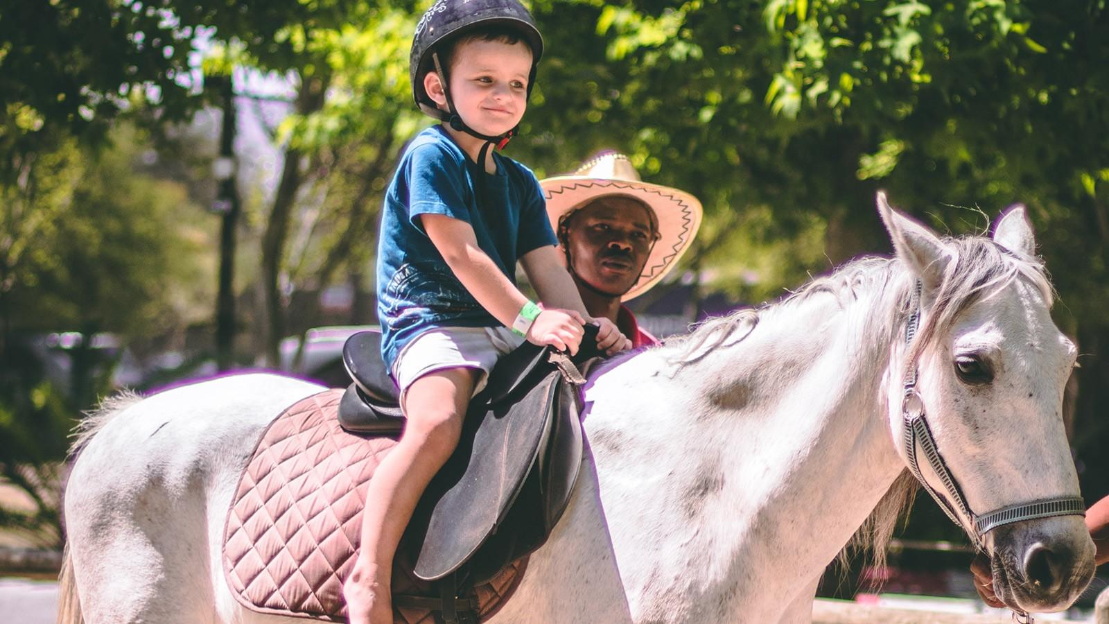 Bugz Playpark | Park & Rides | Horse Rides